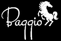 バッジオ_ロゴ